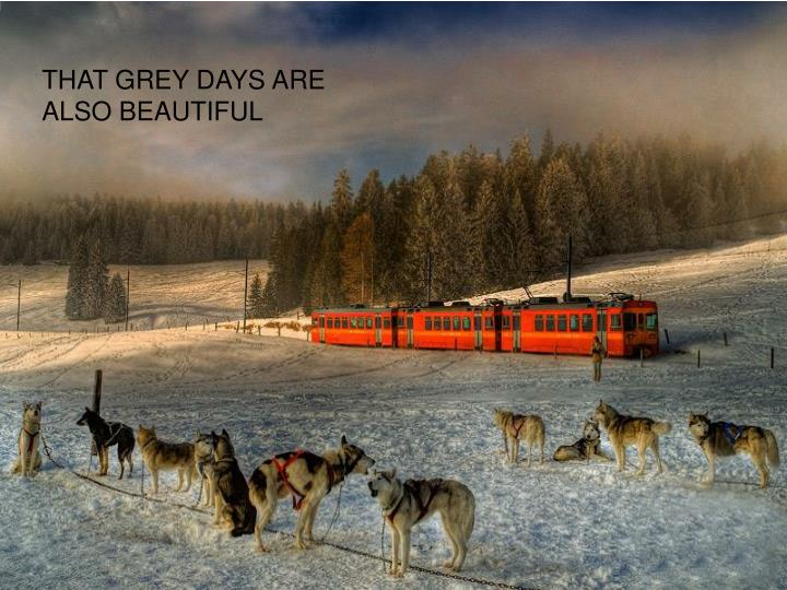 THAT GREY DAYS ARE ALSO BEAUTIFUL