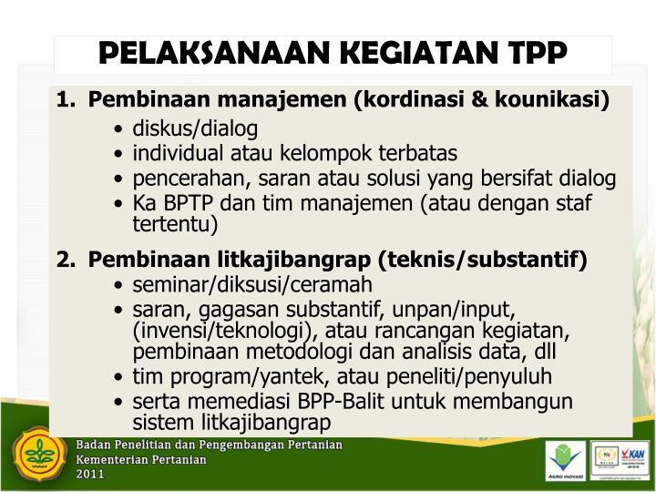 PELAKSANAAN KEGIATAN TPP