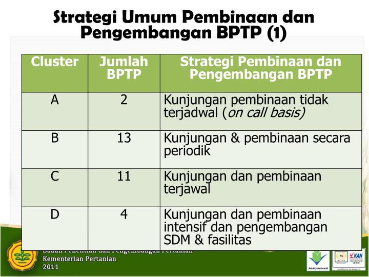 Strategi Umum Pembinaan dan Pengembangan BPTP (1)