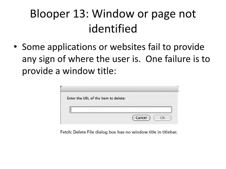 Blooper 13 window or page not identified