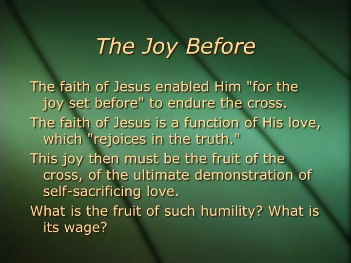 The Joy Before