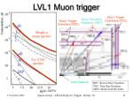 lvl1 muon trigger