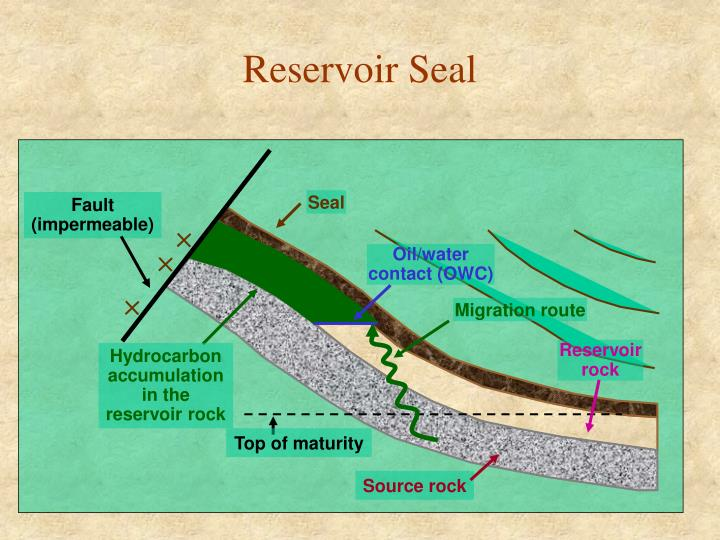 Reservoir seal