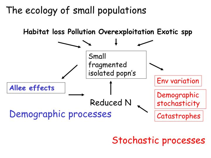 The ecology of small populations