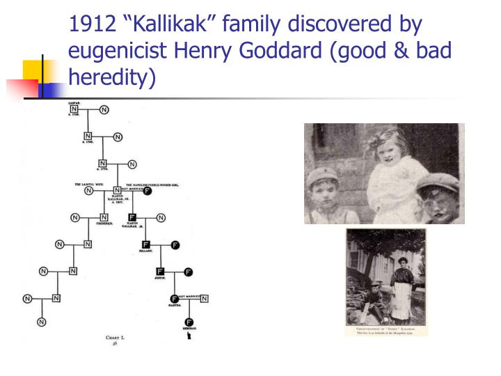 "1912 ""Kallikak"" family discovered by eugenicist Henry Goddard (good & bad heredity)"