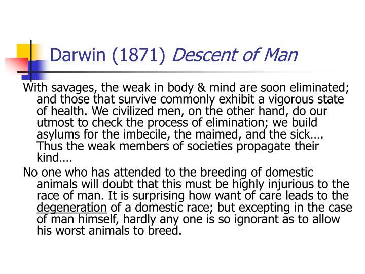 Darwin (1871)