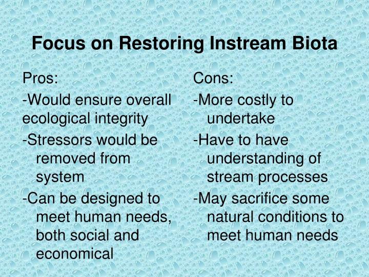 Focus on Restoring Instream Biota