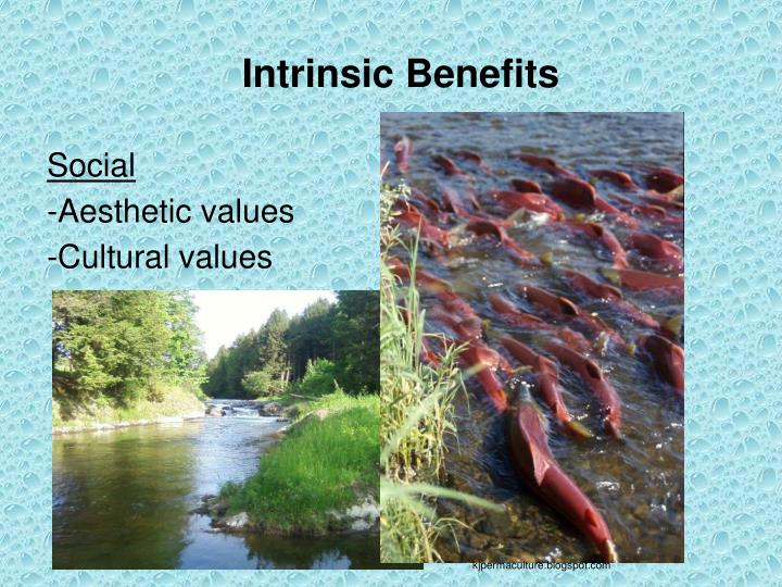 Intrinsic Benefits