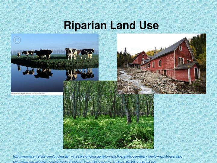Riparian Land Use