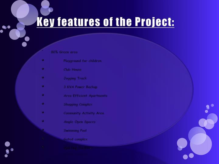 Key features of the project