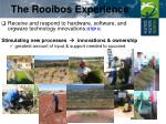 the rooibos experience3