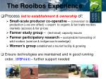 the rooibos experience4