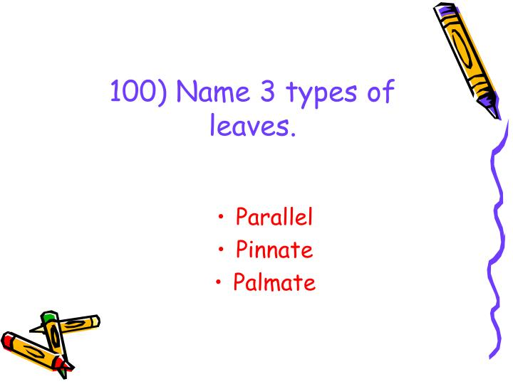 100) Name 3 types of leaves.
