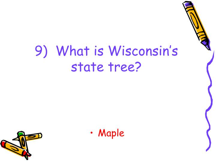 9)  What is Wisconsin's state tree?