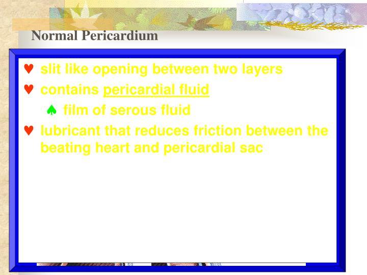 Normal Pericardium