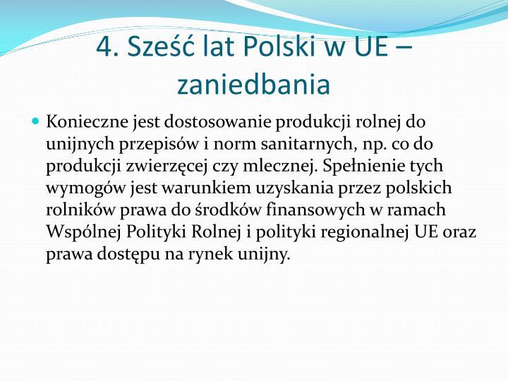 4. Sześć lat Polski w UE – zaniedbania