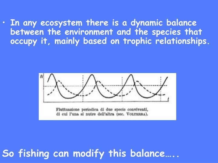 In any ecosystem there is a dynamic balance between the environment and the species that occupy it, mainly based on trophic relationships.