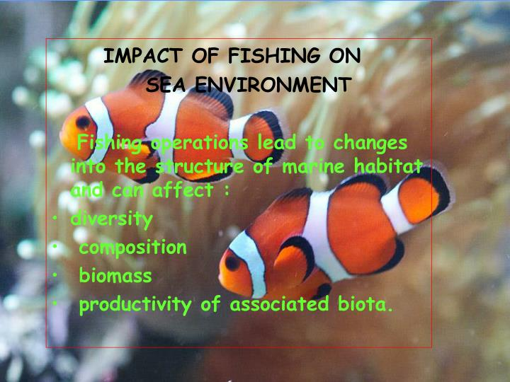 IMPACT OF FISHING ON