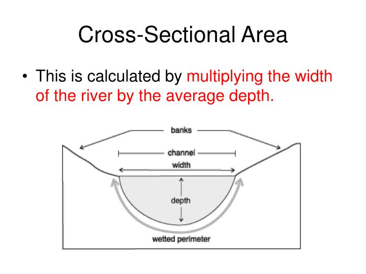 Cross-Sectional Area