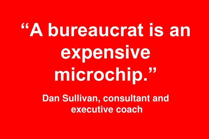 """A bureaucrat is an expensive microchip."""