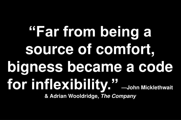 Far from being a source of comfort, bigness became a code for inflexibility.