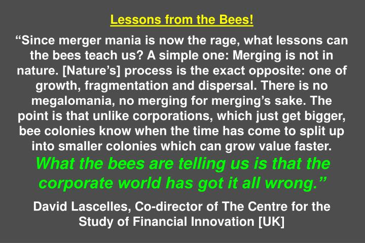 Lessons from the Bees!