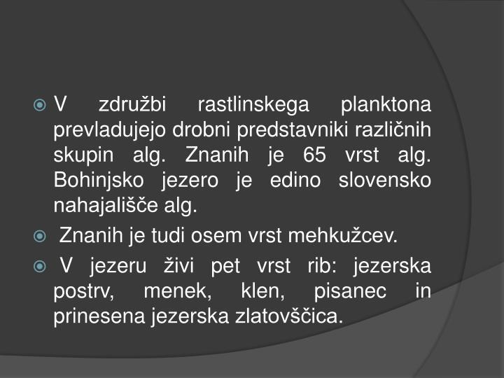 V združbi rastlinskega planktona prevladujejo drobni predstavniki različnih skupin alg. Znanih je 65 vrst alg. Bohinjsko jezero je edino slovensko nahajališče alg.