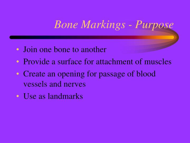 Bone Markings - Purpose