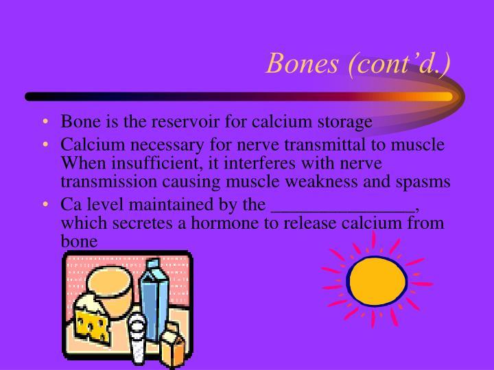 Bones (cont'd.)