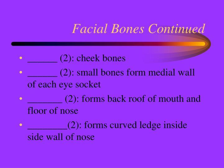 Facial Bones Continued