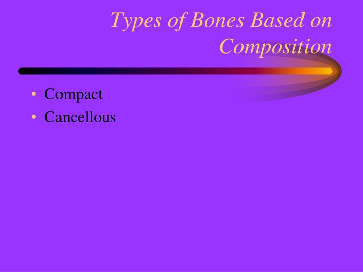 Types of Bones Based on Composition