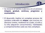 introducci n1