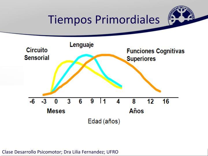 Tiempos Primordiales