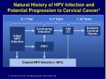 natural history of hpv infection and potential progression to cervical cancer 1
