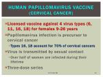 human papillomavirus vaccine cervical cancer