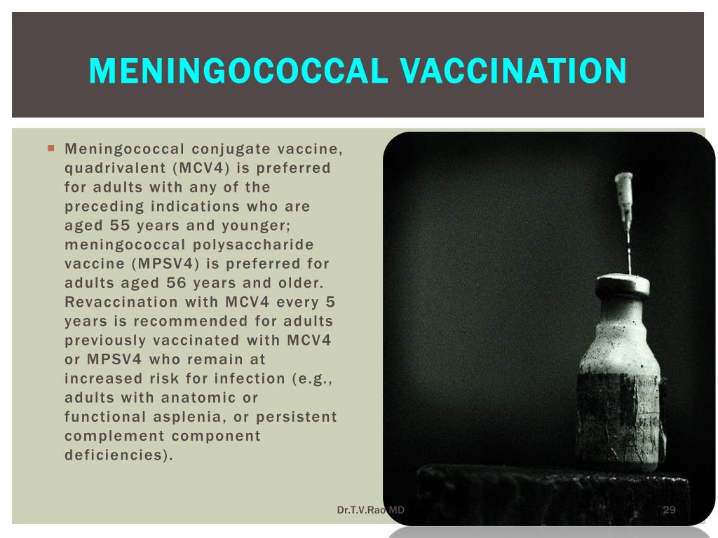 Meningococcal vaccination