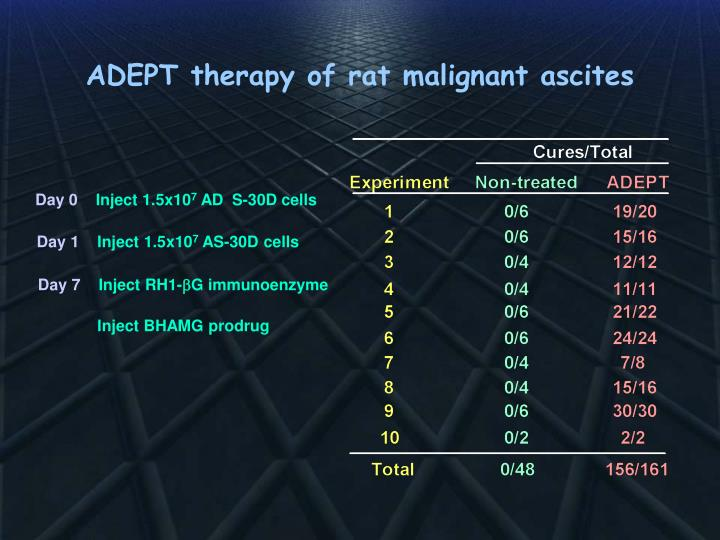 ADEPT therapy of rat malignant ascites