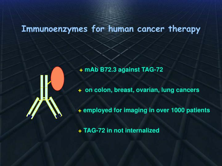 Immunoenzymes for human cancer therapy