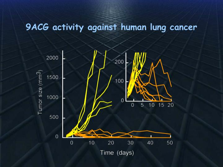 9ACG activity against human lung cancer
