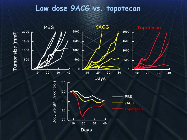 Low dose 9ACG vs. topotecan
