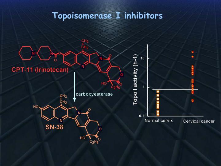 Topoisomerase I inhibitors
