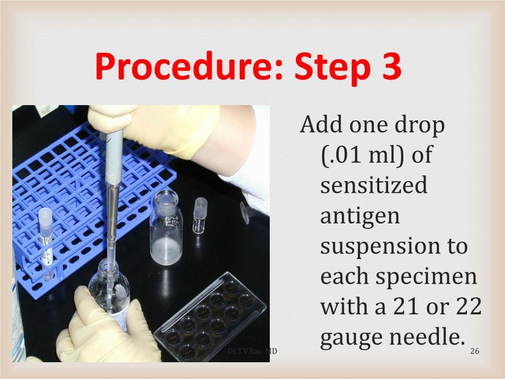 Procedure: Step 3