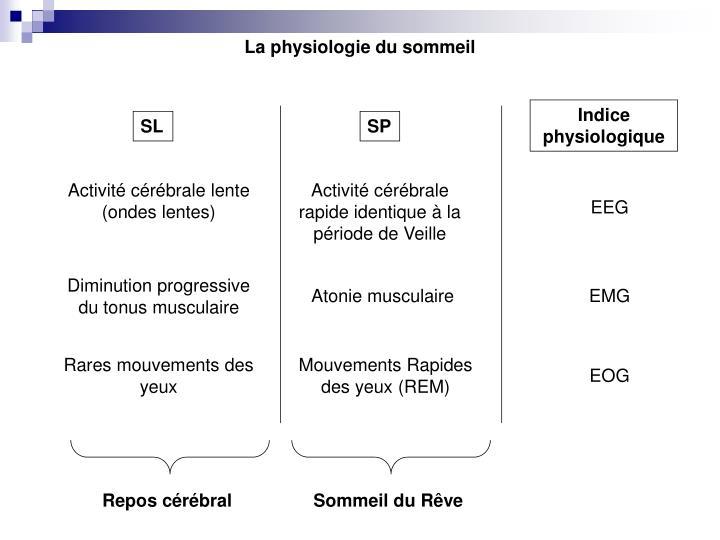 La physiologie du sommeil