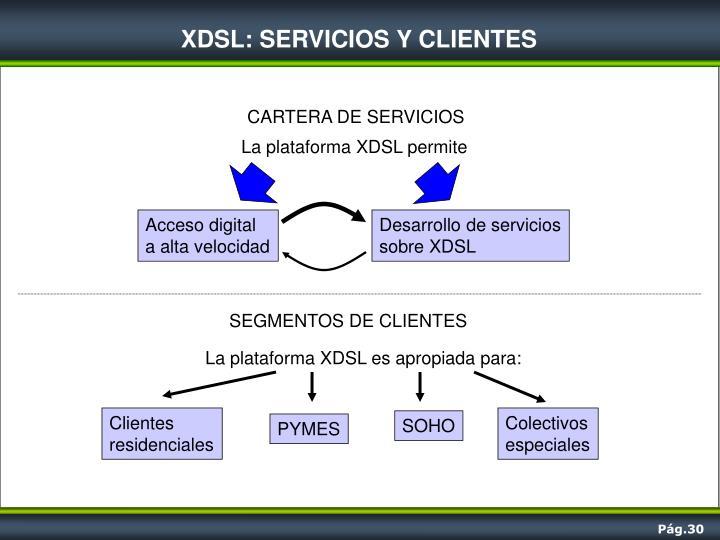 XDSL: SERVICIOS Y CLIENTES