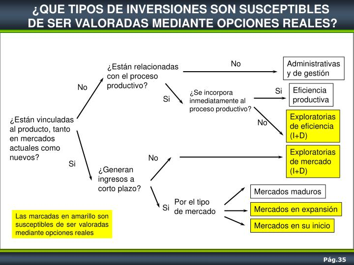 ¿QUE TIPOS DE INVERSIONES SON SUSCEPTIBLES