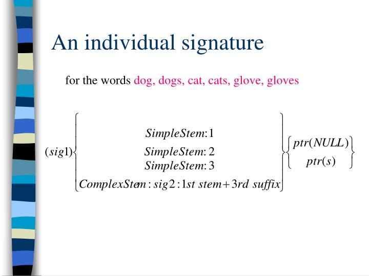 An individual signature