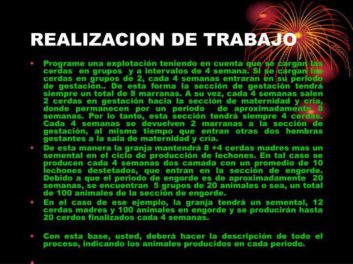 REALIZACION DE TRABAJO