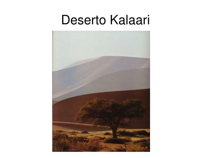 Deserto Kalaari