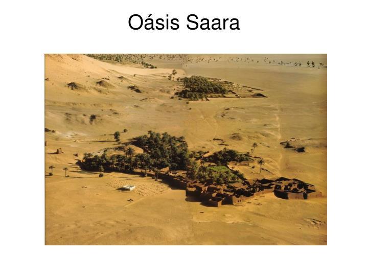 Oásis Saara