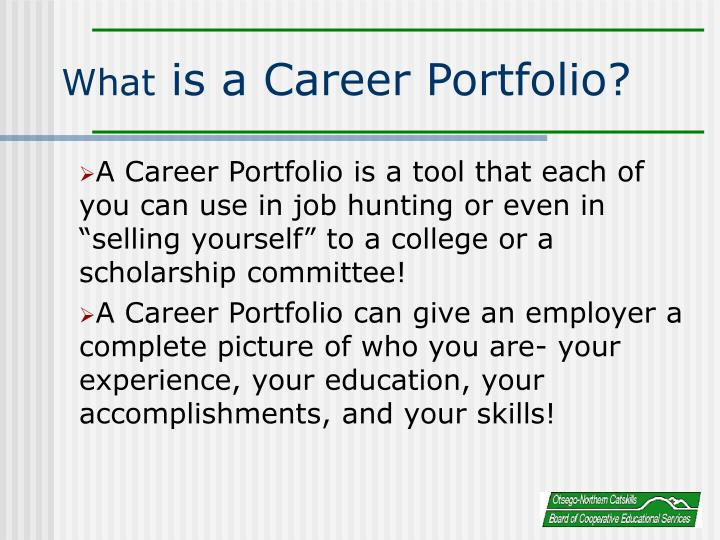 What is a career portfolio